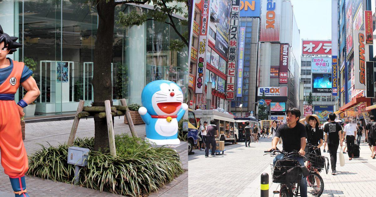 Daytime Tour : Akihabara Anime & Nature E-Bike Tour