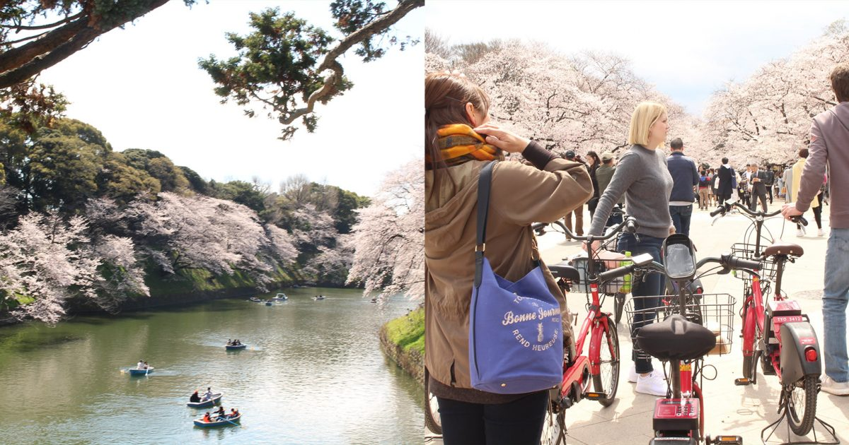 Daytime Tour :Hidden Tokyo Spots & Snacks E-BIke Tour